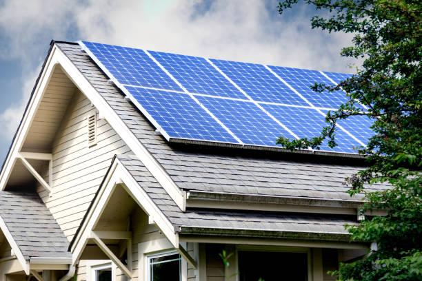zonnepanelen agrarische bedrijven